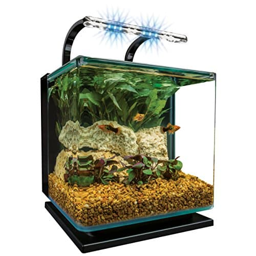Marine Land Contour Glass Aquarium Kit with Rail Lights