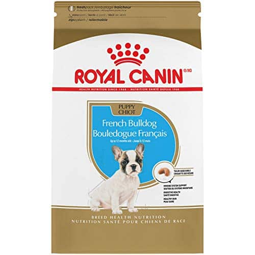Royal Canin Nutrition French Bulldog Puppy Dry Food